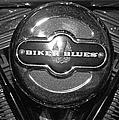 Biker Blues by Michiale Schneider