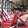 Bikes For Rent by Juli Scalzi