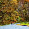 Biking On The Parkway by Roberta Bragan