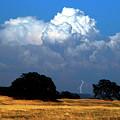 Billowing Thunderhead by Frank Wilson