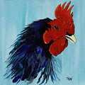 Billy Boy The Rooster by Janice Pariza