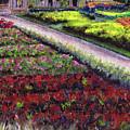 Biltmore Walled Gardens by April Zaidi