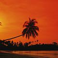 Bintan Island Beach by Gloria & Richard Maschmeyer - Printscapes