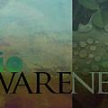 bioAWARENESS II by Char Szabo-Perricelli