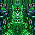 Biologix by Charles Duax