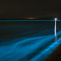 Bioluminescence In Waves by Philip Hart