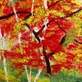 Birch 2 by Maritza Bermudez