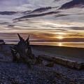 Birch Bay Evening by Mark Joseph
