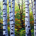 Birch Buddies by Richard T Pranke