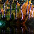 Birch Forest Reflections by Angela Loya