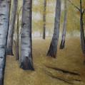 Birch Forest by Ryan Conley