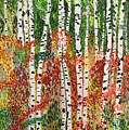 Birch Forest by Valerie Ornstein