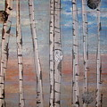 Birch Trees - Clouds by Jacqueline Athmann
