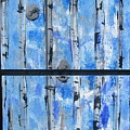 Birch Trees - Blue by Jacqueline Athmann
