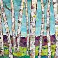 Birch Trees by Phiddy Webb