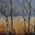Birch Trees by Pol Ledent