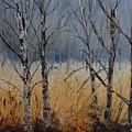 Birch Trees by Pol Ledent