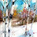 Birch Valley by Diane Splinter