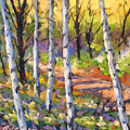 Birches 02 by Richard T Pranke