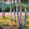 Birches 04 by Richard T Pranke