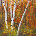 Birches by Garry McMichael