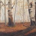 Birches by Jan Byington