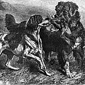 Bird Dogs, 1868 by Granger