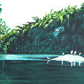 Bird Haven by Usha Shantharam