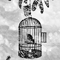 Bird In A Cage-black by Erzebet S