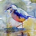Bird In Lake by Kovacs Anna Brigitta
