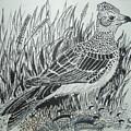 Skyirk Bird by Kenroy Brown
