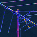 Bird Kite At Midnight by Lenore Senior