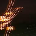 Bird Lights by Joshua Sunday
