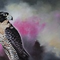 Bird N.11 by Rebecca Tecla