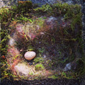 Bird Nest With Egg by Kory Olson
