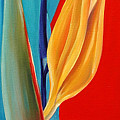 Bird Of Paradise2 by Elsa Gallegos