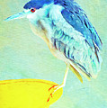 Bird On A Chair by Sandra Selle Rodriguez