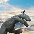 Bird On Hand by Buddy Scott