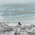 Bird On The Shore by Carolyn Doe
