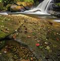 Bird Rock Falls by Reid Northrup