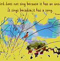 Bird Song by John M Bailey
