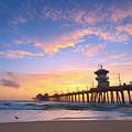 Bird Watching Sunset by Brian Knott Photography
