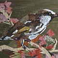Bird White Eye by Basant Soni