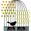 Birdcage Solo by Studio Best