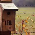 Birdhouse - 1 by Randy Muir