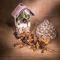 Birdhouse And Behive 1 by Douglas Barnett