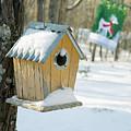 Birdhouse And Deer Flag by Douglas Barnett