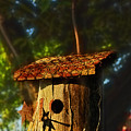 Birdhouse by David Arment