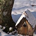 Birdhouse In Snow by Douglas Barnett