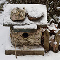Birdhouse In The Snow by Douglas Barnett